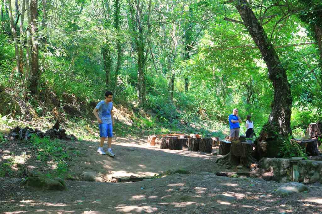 campamento-juventud-estudiante-catolica-jec-2016IMG 1653
